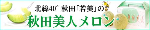 秋田産メロン「秋田美人」