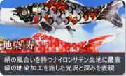 鯉のぼり 地染 寿